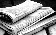 Non-Profit Newsletters